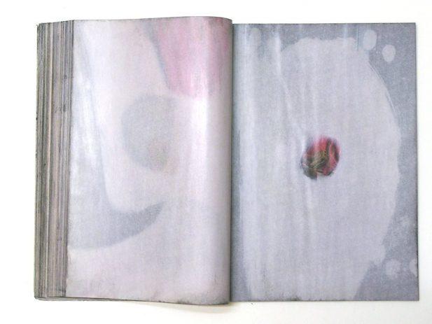 The Golden Issue Doppelseiten  232/233