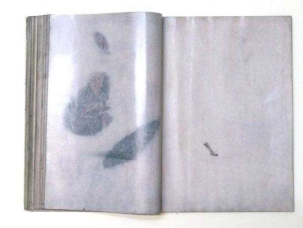 The Golden Issue Doppelseiten  204/205
